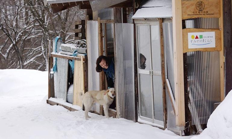 移住者と犬がお出迎え