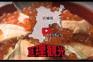 【亘理町公式PR動画】わたりにカモ~ン!