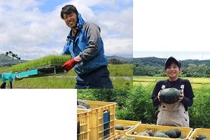 加美町での新規就農を目指す、2名の地域おこし協力隊員。町の農業振興や地域活性化、そしてその先には夢があります!