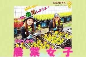 加美町で働こう 一緒に農業しよう!わたしたち農業女子