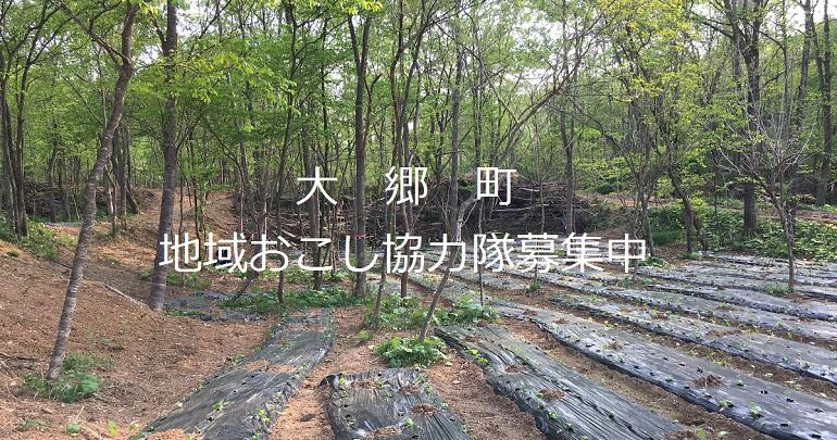 大郷町地域おこし協力隊の募集について|みやぎ移住ガイド